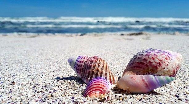 морски туризъм
